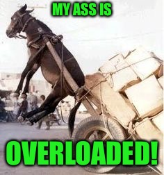 Overloaded donkey | MY ASS IS OVERLOADED! | image tagged in overloaded donkey | made w/ Imgflip meme maker