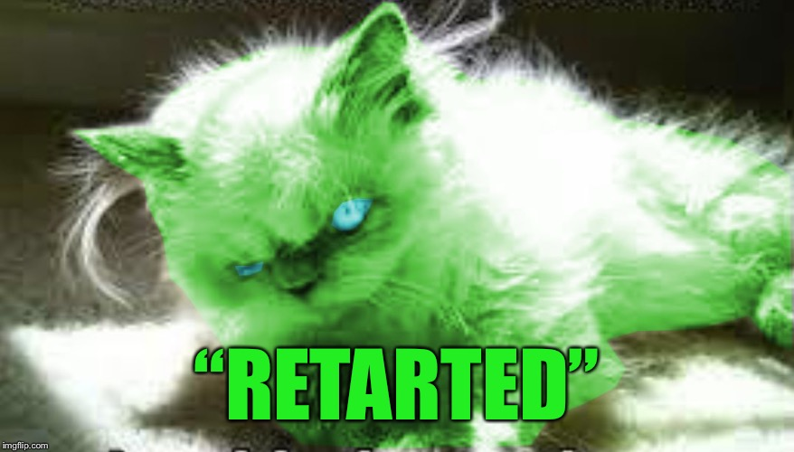 "mad raycat | ""RETARTED"" 