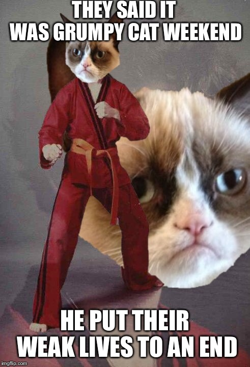 Grumpy Cat's Weekend! A socrates and Craziness_all_the_way event. Oct 5th-8th. | THEY SAID IT WAS GRUMPY CAT WEEKEND HE PUT THEIR WEAK LIVES TO AN END | image tagged in memes,karate kyle,grumpy cat,grumpy cat weekend | made w/ Imgflip meme maker