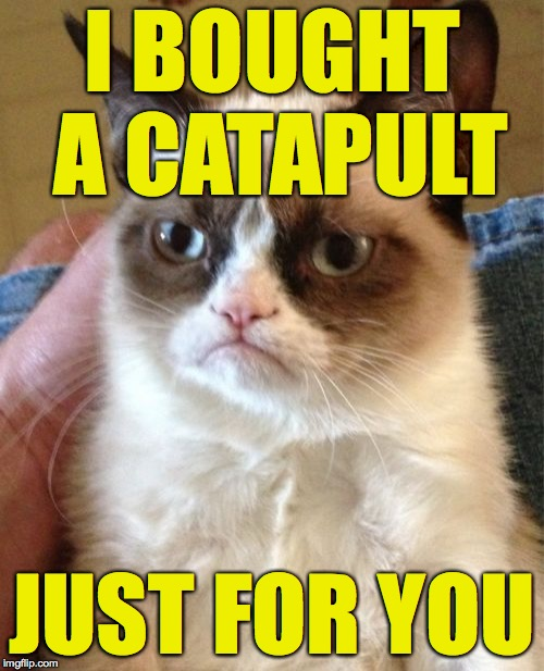 Your trajectory is thru the roof! Grumpy Cat's Weekend. A socrates and Craziness_all_the_way event. Oct 5th-8th. | I BOUGHT A CATAPULT JUST FOR YOU | image tagged in memes,grumpy cat | made w/ Imgflip meme maker