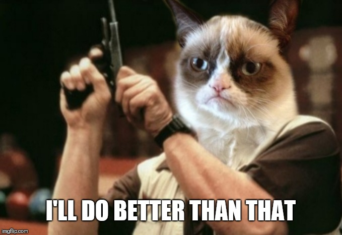 Grumpy cat | I'LL DO BETTER THAN THAT | image tagged in grumpy cat | made w/ Imgflip meme maker