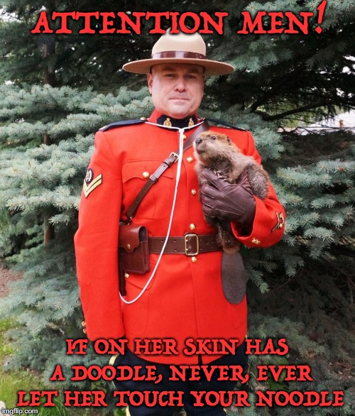 Sergeant Dave Warns | ATTENTION MEN! IF ON HER SKIN HAS A DOODLE, NEVER, EVER LET HER TOUCH YOUR NOODLE | image tagged in mountie beaver,tattoos,stds,canada | made w/ Imgflip meme maker