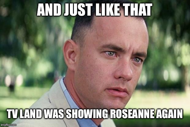 Forrest gump | AND JUST LIKE THAT TV LAND WAS SHOWING ROSEANNE AGAIN | image tagged in forrest gump,roseanne,tv shows | made w/ Imgflip meme maker