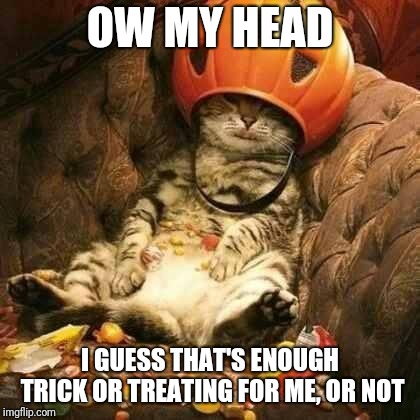 OW MY HEAD I GUESS THAT'S ENOUGH TRICK OR TREATING FOR ME, OR NOT | image tagged in trick or treat cat,halloween,memes | made w/ Imgflip meme maker
