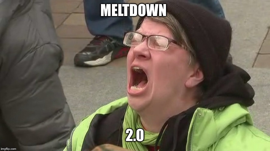 MELTDOWN 2.0 | image tagged in meltdown,protester,snowflake,kavanaugh | made w/ Imgflip meme maker