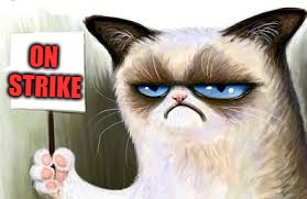 Grumpy Cat sign | ON STRIKE | image tagged in grumpy cat sign | made w/ Imgflip meme maker