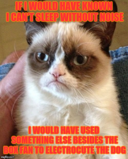 Grumpy Cat Weekend Oct 5th-8th (A Socrates and Craziness_all_the_way event) | IF I WOULD HAVE KNOWN I CAN'T SLEEP WITHOUT NOISE I WOULD HAVE USED SOMETHING ELSE BESIDES THE BOX FAN TO ELECTROCUTE THE DOG | image tagged in memes,grumpy cat,grumpy cat weekend,funny,pets | made w/ Imgflip meme maker