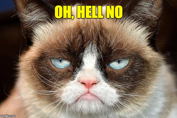 Grumpy Cat Not Amused Meme | OH, HELL NO | image tagged in memes,grumpy cat not amused,grumpy cat | made w/ Imgflip meme maker