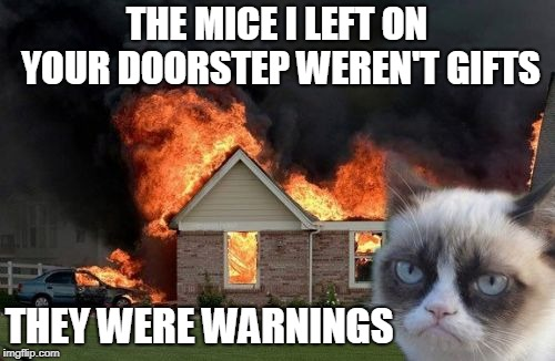 Burn Kitty Meme | THE MICE I LEFT ON YOUR DOORSTEP WEREN'T GIFTS THEY WERE WARNINGS | image tagged in memes,burn kitty,grumpy cat | made w/ Imgflip meme maker