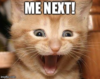 Excited Cat Meme | ME NEXT! | image tagged in memes,excited cat | made w/ Imgflip meme maker