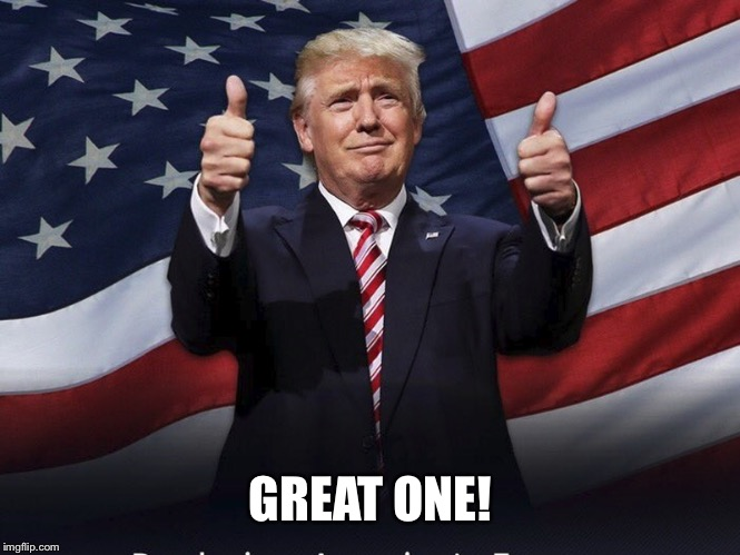 Donald Trump Thumbs Up | GREAT ONE! | image tagged in donald trump thumbs up | made w/ Imgflip meme maker