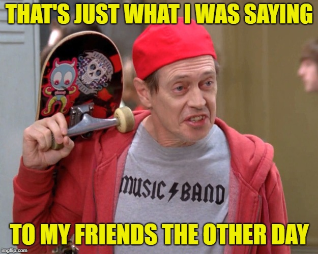 Steve Buscemi Fellow Kids | THAT'S JUST WHAT I WAS SAYING TO MY FRIENDS THE OTHER DAY | image tagged in steve buscemi fellow kids | made w/ Imgflip meme maker