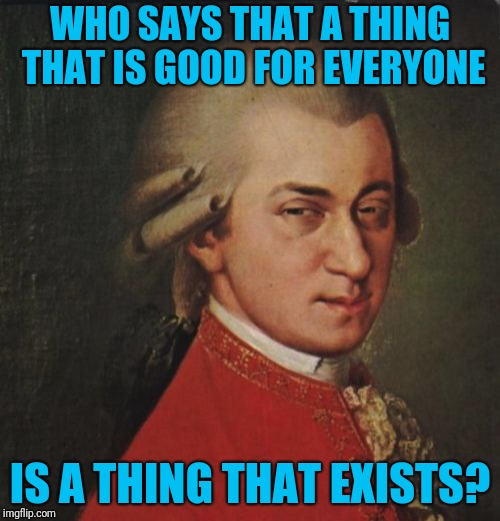 325 million people can't agree on anything, so let's not ram our way down the throats of others | WHO SAYS THAT A THING THAT IS GOOD FOR EVERYONE IS A THING THAT EXISTS? | image tagged in memes,mozart not sure | made w/ Imgflip meme maker