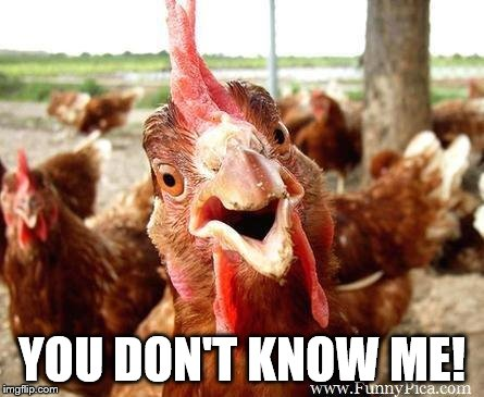 Chicken | YOU DON'T KNOW ME! | image tagged in chicken | made w/ Imgflip meme maker