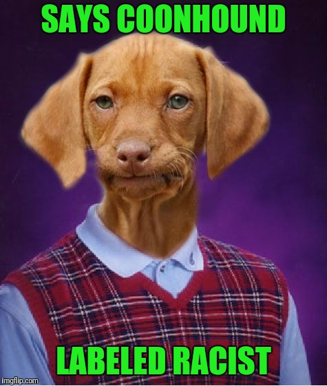 Bad Luck Raydog | SAYS COONHOUND LABELED RACIST | image tagged in bad luck raydog | made w/ Imgflip meme maker