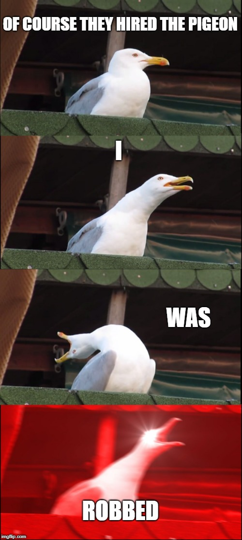 Inhaling Seagull Meme | OF COURSE THEY HIRED THE PIGEON I WAS ROBBED | image tagged in memes,inhaling seagull | made w/ Imgflip meme maker