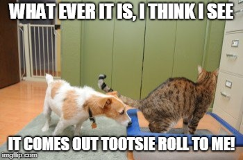 TOOTSIE ROLLS | WHAT EVER IT IS, I THINK I SEE IT COMES OUT TOOTSIE ROLL TO ME! | image tagged in tootsie rolls | made w/ Imgflip meme maker