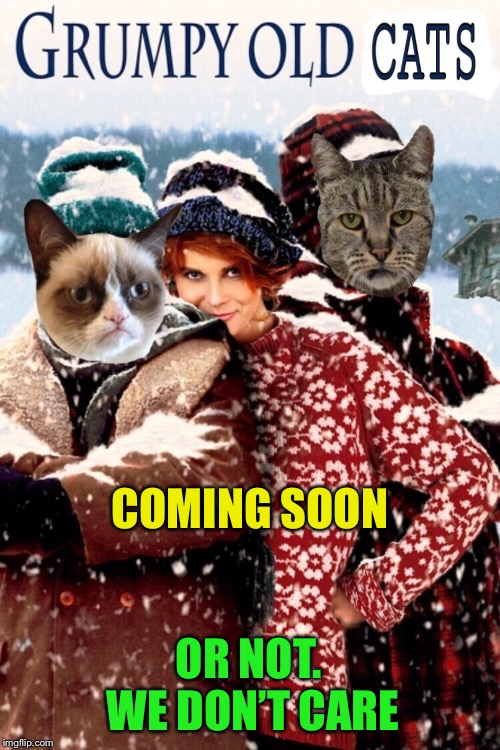 One for Grumpy Cat Weekend!-They're old.  They're grumpy.  They're stupid cats. |  COMING SOON; OR NOT.  WE DON'T CARE | image tagged in grumpy old men,grumpy cat,grumpy cat weekend,funny memes | made w/ Imgflip meme maker