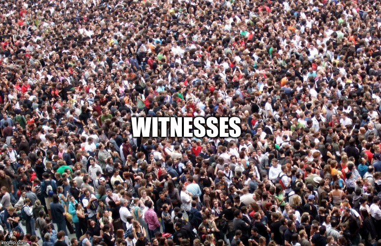 crowd of people | WITNESSES | image tagged in crowd of people | made w/ Imgflip meme maker