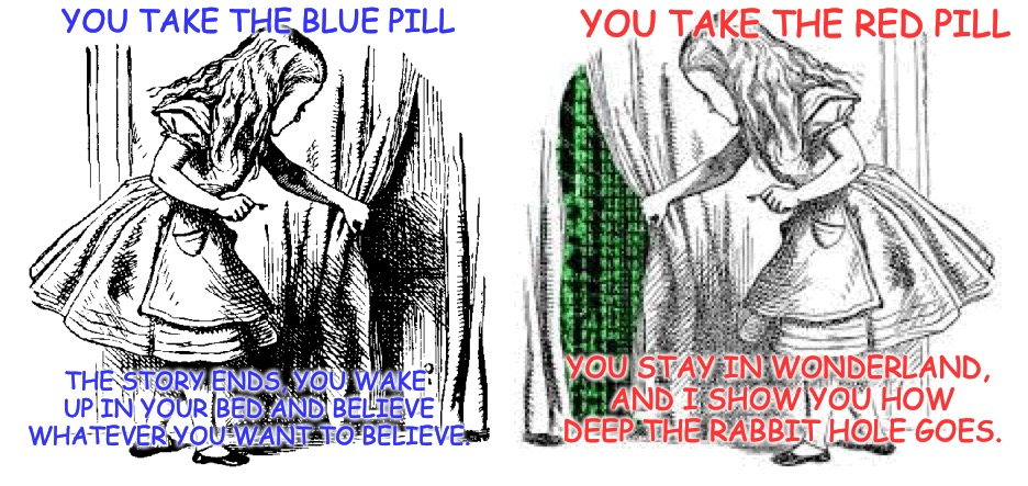 Alice in the Matrix, I show how deep the Rabbit Hole goes. | YOU TAKE THE BLUE PILL THE STORY ENDS, YOU WAKE UP IN YOUR BED AND BELIEVE WHATEVER YOU WANT TO BELIEVE. YOU TAKE THE RED PILL YOU STAY IN W | image tagged in matrix,alice in wonderland,red pill blue pill | made w/ Imgflip meme maker