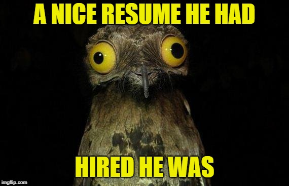 Weird Stuff I Do Potoo Meme | A NICE RESUME HE HAD HIRED HE WAS | image tagged in memes,weird stuff i do potoo | made w/ Imgflip meme maker