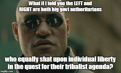 Matrix Morpheus Meme | What if I told you the LEFT and RIGHT are both big govt authoritarians who equally shat upon individual liberty in the quest for their triba | image tagged in memes,matrix morpheus | made w/ Imgflip meme maker