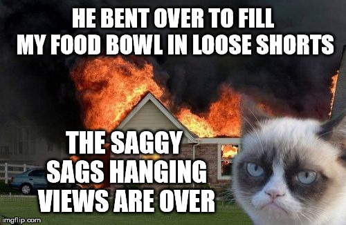 Nuts Roasting Over an Open Fire: Grumpy Cat Weekend by Craziness_all_the_way and socrates!  | HE BENT OVER TO FILL MY FOOD BOWL IN LOOSE SHORTS THE SAGGY SAGS HANGING VIEWS ARE OVER | image tagged in memes,burn kitty,grumpy cat,grumpy cat weekend | made w/ Imgflip meme maker