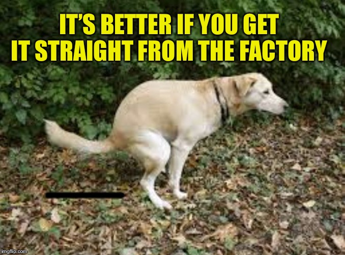 Dog pooping  | IT'S BETTER IF YOU GET IT STRAIGHT FROM THE FACTORY ——— | image tagged in dog pooping | made w/ Imgflip meme maker