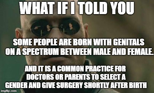 Matrix Morpheus Meme | WHAT IF I TOLD YOU SOME PEOPLE ARE BORN WITH GENITALS ON A SPECTRUM BETWEEN MALE AND FEMALE. AND IT IS A COMMON PRACTICE FOR DOCTORS OR PARE | image tagged in memes,matrix morpheus | made w/ Imgflip meme maker