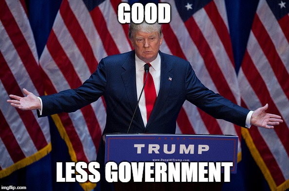 Donald Trump | GOOD LESS GOVERNMENT | image tagged in donald trump | made w/ Imgflip meme maker