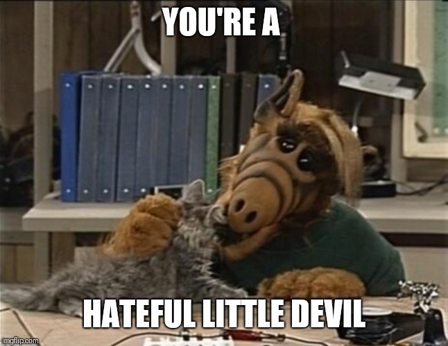 Alf cat | YOU'RE A HATEFUL LITTLE DEVIL | image tagged in alf cat | made w/ Imgflip meme maker