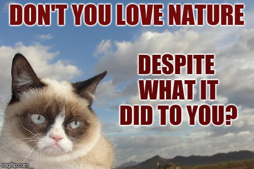 A socrates and Craziness_all_the_way event. Oct 5th-8th. | DON'T YOU LOVE NATURE DESPITE WHAT IT DID TO YOU? | image tagged in memes,grumpy cat sky,grumpy cat,grumpy cat weekend,jokes,nature | made w/ Imgflip meme maker