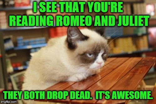 Book Review (A socrates and Craziness_all_the_way event. Oct 5th-8th) | I SEE THAT YOU'RE READING ROMEO AND JULIET THEY BOTH DROP DEAD.  IT'S AWESOME. | image tagged in memes,grumpy cat table,grumpy cat,grumpy cat weekend,romeo and juliet | made w/ Imgflip meme maker