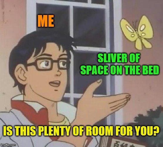 I just need a little extra leg space... and arm space. | ME SLIVER OF SPACE ON THE BED IS THIS PLENTY OF ROOM FOR YOU? | image tagged in memes,is this a pigeon,bed hog,need more room | made w/ Imgflip meme maker