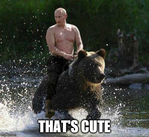 Putin Thats Cute | THAT'S CUTE | image tagged in putin thats cute | made w/ Imgflip meme maker