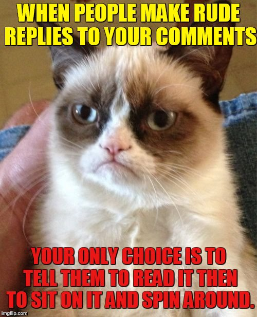 Grumpy Cat Banished | WHEN PEOPLE MAKE RUDE REPLIES TO YOUR COMMENTS YOUR ONLY CHOICE IS TO TELL THEM TO READ IT THEN TO SIT ON IT AND SPIN AROUND. | image tagged in memes,grumpy cat,grumpy cat weekend,rude,reply,sit and spin | made w/ Imgflip meme maker