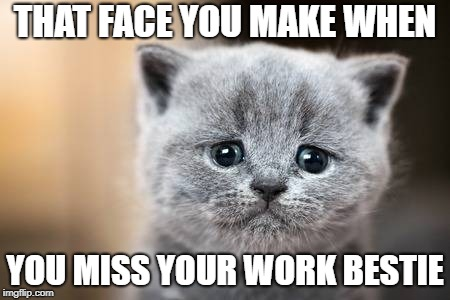 THAT FACE YOU MAKE WHEN YOU MISS YOUR WORK BESTIE | image tagged in when you miss your work bestie | made w/ Imgflip meme maker