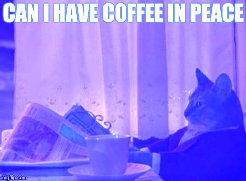 I Should Buy A Boat Cat Meme | CAN I HAVE COFFEE IN PEACE | image tagged in memes,i should buy a boat cat | made w/ Imgflip meme maker