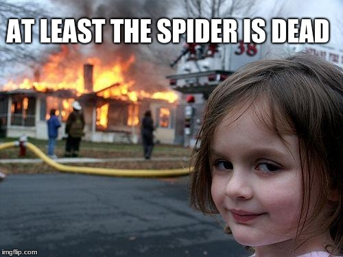 Disaster Girl Meme | AT LEAST THE SPIDER IS DEAD | image tagged in memes,disaster girl | made w/ Imgflip meme maker