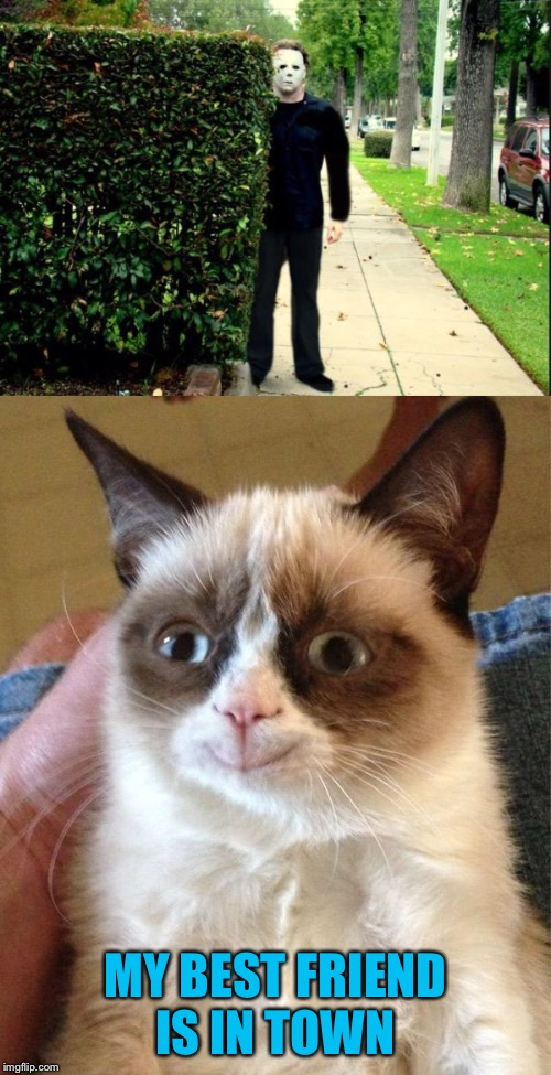 Grumpy Cat Weekend by Craziness_all_way and socrates  | MY BEST FRIEND IS IN TOWN | image tagged in craziness_all_the_way,socrates,grumpy cat,michael myers,halloween | made w/ Imgflip meme maker