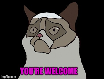 Cartoon grumpy cat | YOU'RE WELCOME | image tagged in cartoon grumpy cat | made w/ Imgflip meme maker