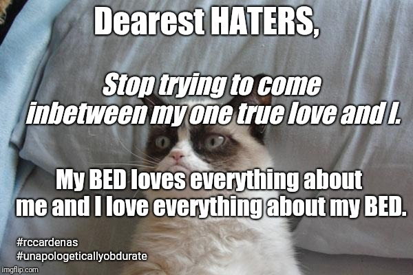 Dearest HATERS | Dearest HATERS, Stop trying to come inbetween my one true love and I. My BED loves everything about me and I love everything about my BED. # | image tagged in memes,grumpy cat bed,grumpy cat,haters,bed,true love | made w/ Imgflip meme maker