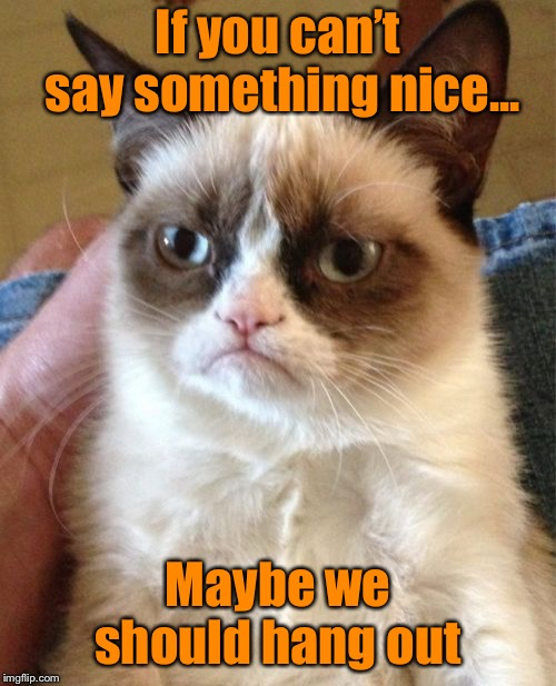 It's good to find something in common...Grumpy Cat weekend- A Craziness_all_the_way and Socrates event  | If you can't say something nice... Maybe we should hang out | image tagged in memes,grumpy cat,funny,like minded,soulmates | made w/ Imgflip meme maker