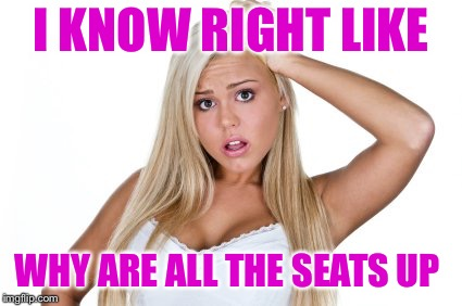 Dumb blonde | I KNOW RIGHT LIKE WHY ARE ALL THE SEATS UP | image tagged in dumb blonde | made w/ Imgflip meme maker