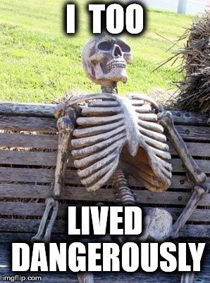 I  TOO LIVED DANGEROUSLY | image tagged in memes,waiting skeleton | made w/ Imgflip meme maker