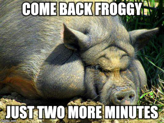 COME BACK FROGGY JUST TWO MORE MINUTES | made w/ Imgflip meme maker