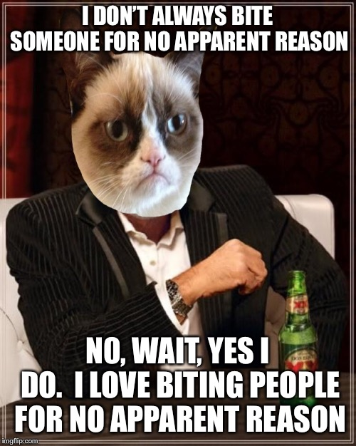 I DON'T ALWAYS BITE SOMEONE FOR NO APPARENT REASON N0, WAIT, YES I DO.  I LOVE BITING PEOPLE FOR NO APPARENT REASON | made w/ Imgflip meme maker