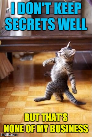 Walking Cat | I DON'T KEEP SECRETS WELL BUT THAT'S NONE OF MY BUSINESS | image tagged in walking cat | made w/ Imgflip meme maker