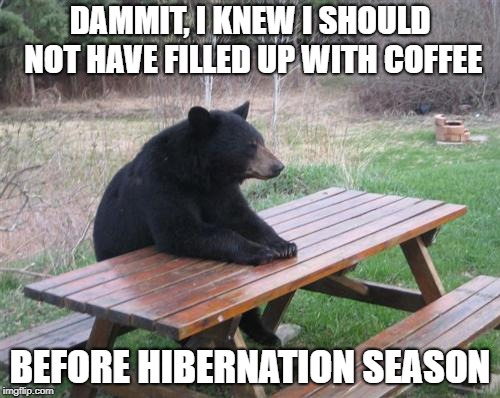 Bad Luck Bear | DAMMIT, I KNEW I SHOULD NOT HAVE FILLED UP WITH COFFEE BEFORE HIBERNATION SEASON | image tagged in memes,bad luck bear | made w/ Imgflip meme maker
