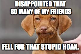 Disappointed Dog | DISAPPOINTED THAT SO MANY OF MY FRIENDS FELL FOR THAT STUPID HOAX. | image tagged in disappointed dog | made w/ Imgflip meme maker